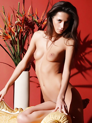 Amour Angels  Alsu  Solo, Skinny, Teens